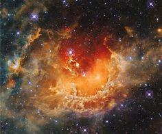Amas constellaire dans la nébuleuse Tadpole