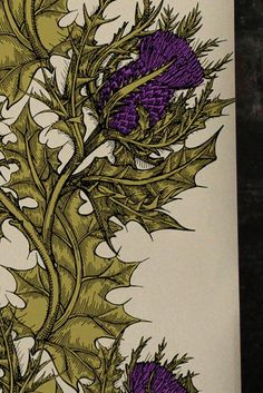detail...Timorous Beasties, Grand Thistle Wallpaper, thistle decor