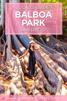 A Locals Guide to Balboa Park - Travel San Diego - Ideas of Travel San Diego San Diego Vacation, San Diego Travel, San Diego Zoo, North Park San Diego, Visit San Diego, San Diego Beach, Voyage Usa, Moving To San Diego, Places To Travel