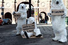 Icebjoernssons ställer sig frågande utanför Sveriges Riksdag.