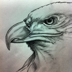 Bald eagle Art by LeAnne DeShazo