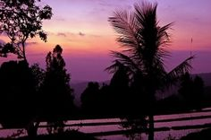 Bali - has some of the most amazing sunsets in the world.