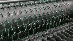 Making chicken wire fencing.