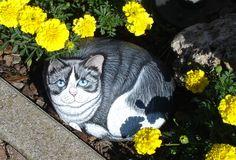 gatto bianco e nero dipinto su un sasso