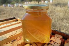 Organic Greek Raw Honey - Unprocessed - From Windflowers, Thyme & Orange Blossom - - Jar by Melirrous on Gourmly Organic Raw Honey, Citrus Trees, Natural Vitamins, Orange Blossom, Unique Recipes, Food Items, Hot Sauce Bottles, A Food, Greek