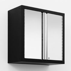 Pro Stainless Steel Wall Cabinet
