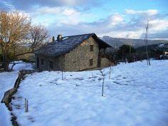 rural medulas en invierno