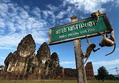 Phra Prang Sam Yot : Lopburi, Thailand