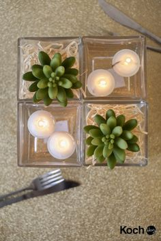 DIY table centrepiece: Green succulents & floating candles