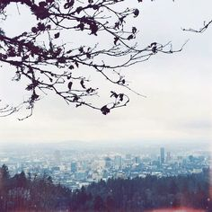View from Pittock Mansion • Portland, Oregon