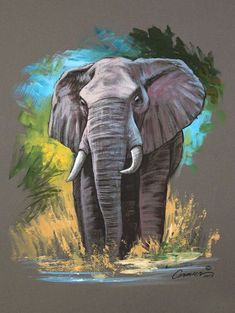 Mixed Media Elephant Sketch - New Sites Elephant Painting Canvas, Art Gallery, Art Painting, Pastel Art, Animal Art, Watercolor Elephant, Elephant Sketch, Animal Paintings, Elephant Painting