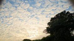 Se ven como pequeños pedazos de nube se van uniendo hasta hacerse mas densas