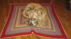 Crafty escapism: Lap Blanket