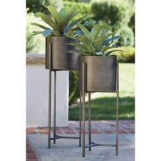Dundee Short Plant Stand - Crate and Barrel Indoor Plant Shelves, Indoor Plant Pots, Indoor Planters, Planter Pots, Indoor Garden, Short Plants, Tall Plants, Large Plants, Dundee