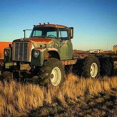 Salt-Air Elements Are Patining This Truck Redneck Trucks, Farm Trucks, Big Rig Trucks, New Trucks, Diesel Trucks, Custom Trucks, Lifted Trucks, Cool Trucks, Dually Trucks