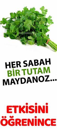 Her Sabah Uyanır Uyanmaz Bir Tutam Maydanoz Yemek Herbalism, The Cure, Health Fitness, Herbs, Nutrition, Fruit, Healthy, Food, Leaves