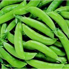 Super Sugar Snap - Pea Seeds
