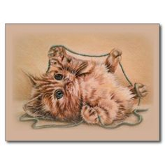 Cat art for cat lovers! An adorable cat illustration of a kitten playing with turquoise yarn, adorable pencil drawing from the Artistry by Lisa Marie studio. Perfect gift for cat and pet lovers. #CatArt #CatDecor #CuteKitten