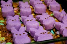 Peeps Smores, to be used with the peeps in a jar
