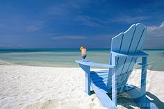 Image result for adirondack chairs on a beach