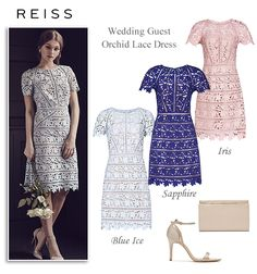 Reiss Orchid Blue and Pink Lace Dresses
