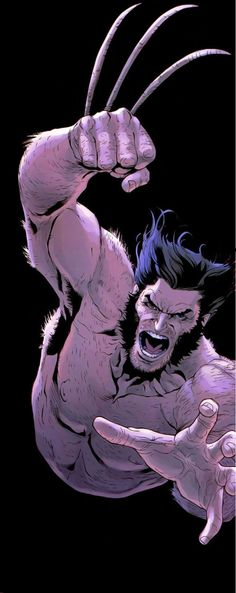 Wolverine by Renato Guedes