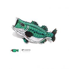 Costa Bass Fish Art (Hosted by Sport Fishing) Sport Fishing, Bass Fishing, Costa Sunglasses, Fishing Stuff, Fish Print, Cover Photos, Favorite Things, Outdoors, Wallpaper