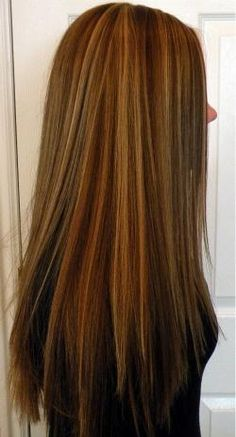 Long Hair with slight layering, Honey Highlights with Medium Golden Brown Low Lights