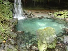 Emerald Pool Nature Trail (Morne Trois Pitons National Park) - 2018 All You Need to Know Before You Go (with Photos) - TripAdvisor Saint Patrick, Parc National, National Parks, Places To Travel, Places To See, Attraction, Singles Cruise, Trail, Tour Tickets