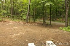Campsite Photo of Site 141 at Moreau Lake State Park, New York - Cross Site View
