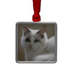 Rgdoll Cat Christmas ornament  #christmas #ragdolls