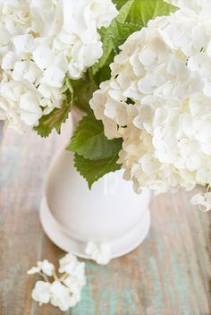 Love having fresh hydrangeas in the house. Here's how to keep them looking their best!