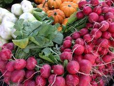 ¿Cuál es el perfil del consumidor de productos ecológicos?