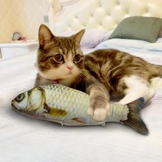 Buy Funny Catnip Toys for Cats Plush Stuffed Fish Shape Cat Toy Mint Simulation Interactive Pet Kitten Chewing Toys Dropshipping Dog Booties, Cat Litter Mat, Interactive Cat Toys, Kitten Toys, Catnip Toys, Fish Cat Toy, Pet Paws, Cats And Kittens, Kitty Cats