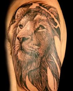 Lion tattoo designs have a rich history and can portray the great lion in several ways. Due to this, we'll discuss lion tattoo variations, meanings, and look at lion tattoo ideas for inspiration. Lions Tattoo, Leo Lion Tattoos, Lion Arm Tattoo, Lion Tattoo Design, Weird Tattoos, Great Tattoos, Arm Tattoos, Animal Tattoos, Beautiful Tattoos