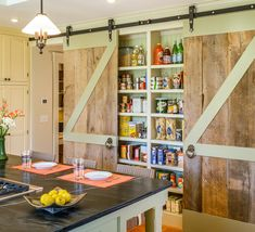 Organized kitchen pantry ideas shallow pantry w/ sliding doors - Experience Of Pantrys Kitchen Pantry, New Kitchen, Narrow Kitchen, Kitchen Ideas, Kitchen Walls, Rustic Kitchen, Awesome Kitchen, Western Kitchen, Kitchen Cabinets