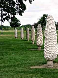 Cornhenge: A strange field of 109 eight foot tall concrete ears of corn -- a quirky and eccentric roadside American landmark in Ohio.
