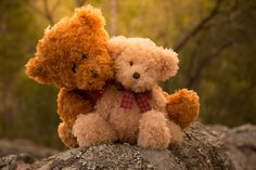 Teddy Bear Love by Esther Visser on 500px