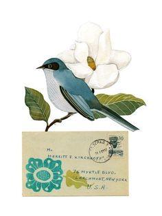Pájaro No.30