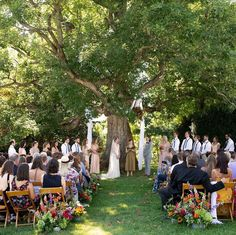 A grand tree can be such a charming backdrop for an outdoor wedding. This setting also has the added bonus of providing shade for the wedding party & guests. from & photo by Tree Wedding, Wedding Day, Vineyard Wedding Venues, Grounding Meditation, Wedding Ceremony Backdrop, Southern Weddings, Party Guests, Beautiful Images, Vows