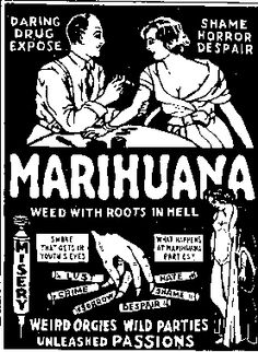 How Marijuana Became Illegal  by Bud Fairy