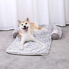 Pawz Road Dog Bed 3 In 1 Pet Mat Cushion For Small Dogs And Cats Snuggly Orthopedic Sleeper Dog Dogbed Petlife Doglov Dog Bed Large Dog Bed Dog Bed Luxury