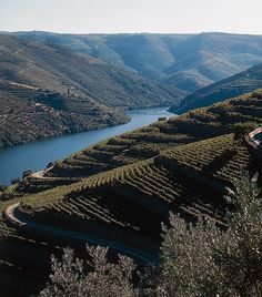 Douro river, North Portugal