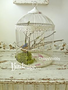 Chippy White ViNtaGe BIRDCAGE hints of Old Pink by ChippyShabby, $68.00