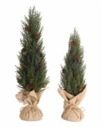 "Cedar Tree 2 Sizes 18 .75"", 22.75""H Plastic/Bu"