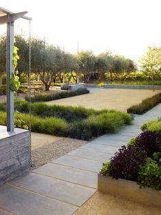 Olive trees, ornamental grasses, decomposed granite