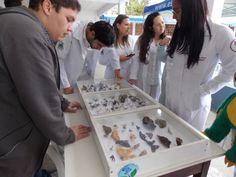 Preocupação com o ambiente aumenta o mercado para o biólogo: ...