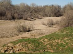 The Salinas Riverbed New Year's Day, 2015