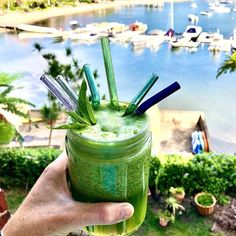 There was a short break in the clouds this morning, just as I was drinking my celery, mint and lemon juice.⠀⠀⠀⠀⠀⠀⠀⠀⠀ The great thing about drinking this with a straw is that I bypass the foam on the top! ⠀⠀⠀⠀⠀⠀⠀⠀⠀ See details of the glass straw set which includes two straws, a metal straw cleaner & a carry bag on the site.⠀⠀⠀⠀⠀⠀⠀⠀⠀ ⠀⠀⠀⠀⠀⠀⠀⠀⠀ Just can't get my head around celery foam...🤔⠀⠀⠀⠀⠀⠀⠀⠀⠀ Metal Straws, Short Break, Carry Bag, Zero Waste, Celery, Drinking, Juice, Lemon, Mint