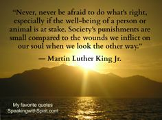 """""""Never be afraid to do what's right..."""" Martin Luther King, Jr."""